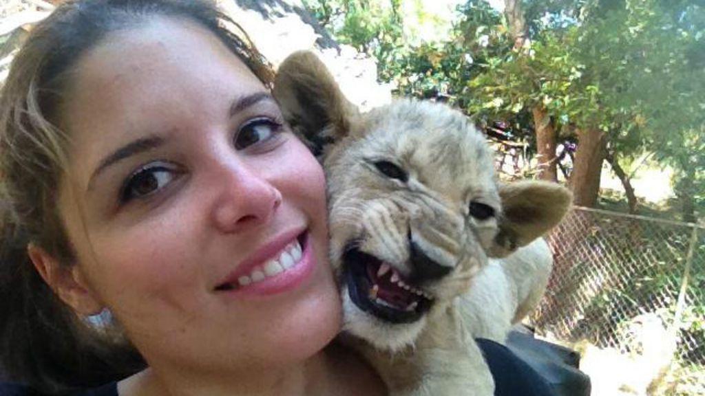 Voluntária faz campanha para salvar filhote de leão que viu crescer ...