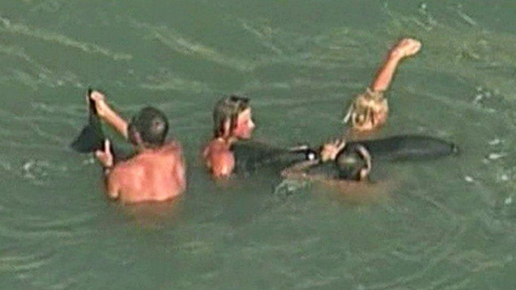 Salva-vidas mergulham para salvar baleia nos EUA - BBC Brasil
