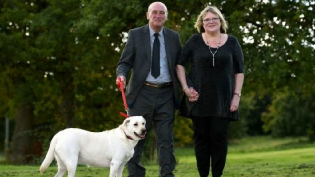 Labrador ajuda casal inglês a dobrar prêmio de loteria - BBC Brasil