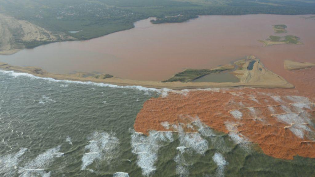 Do turismo à fauna, 5 vozes da tragédia ambiental no litoral capixaba