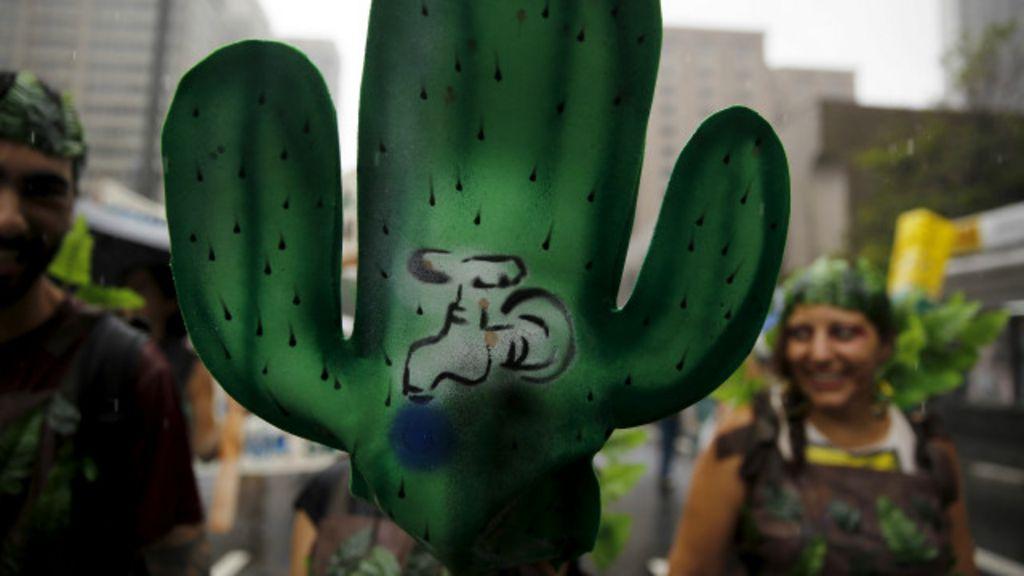 Cinco mudanças ambientais já em curso no Brasil e seus impactos ...