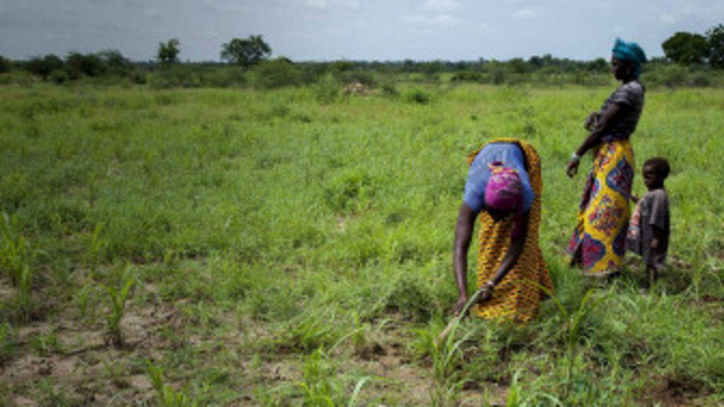 Garin da mata zalla ke rayuwa - BBC Hausa