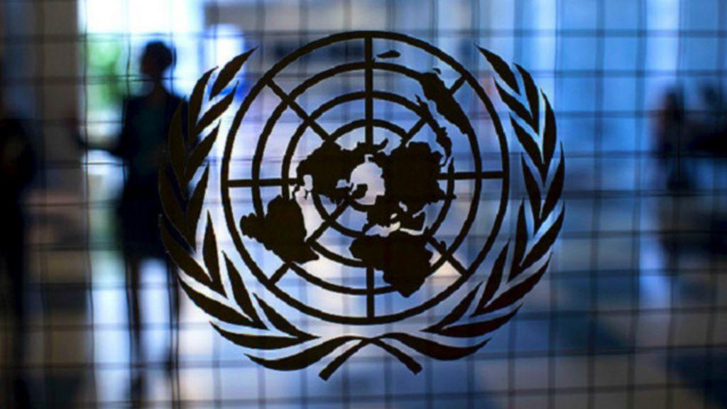ONU defende descriminalização do aborto em meio à epidemia de ...
