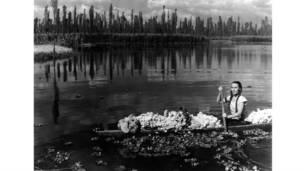 Mexicano é considerado um dos diretores de fotografia mais importantes do século 20