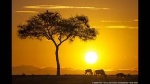 Imagens registram cidades, lagos, florestas e habitats de animais iluminados pela luz especial do nascer e do pôr do astro-rei.