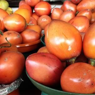 Tomate de árbol (Solanum betaceum)