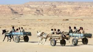 Personas en unos carros tirados por burros en el desierto.
