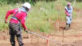 Removing land mines in Sri Lanka