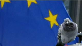 यूरोपीय संघ