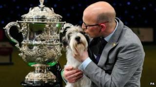 Jilly, anjing terbaik Inggris 2013