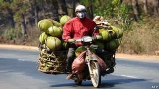 Nông dân chở mít ở Đắk Lắk