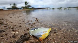 Laguna Keehi, Hawaii