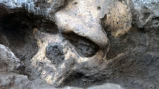 Crânio descoberto na Geórgia. Foto: AFP