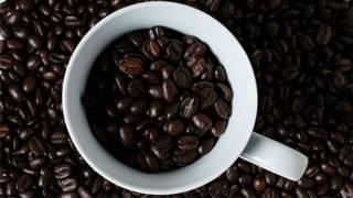 Grãos de café (Arquivo/PA)