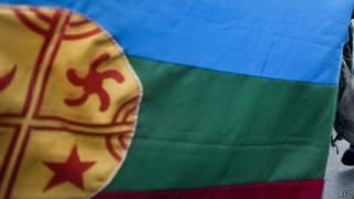 Bandera mpuche