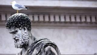 Gaviota sobre estatua en Roma