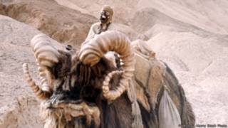 151214114526_star_wars_animals_bantha_bb