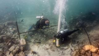 La exploración del lugar del naufragio comenzó en 2013.