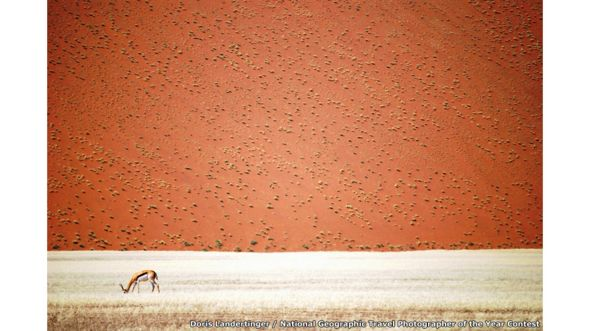 El desierto de Namibia por Doris Landertinger / National Geographic Travel Photographer of the Year Contest