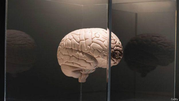 Seis dicas para manter o cérebro sempre jovem