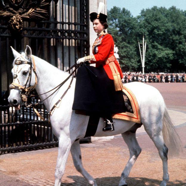 Белая лошадь и королева