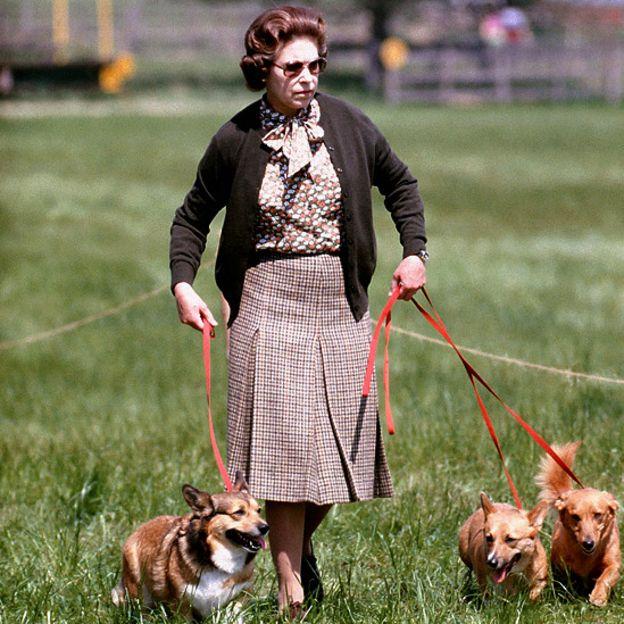 Елизавета и псы