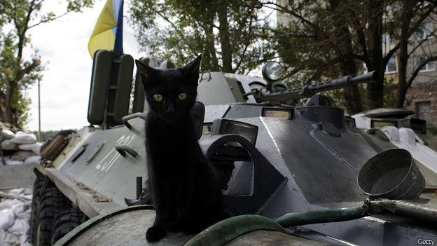 Котенок на БТР