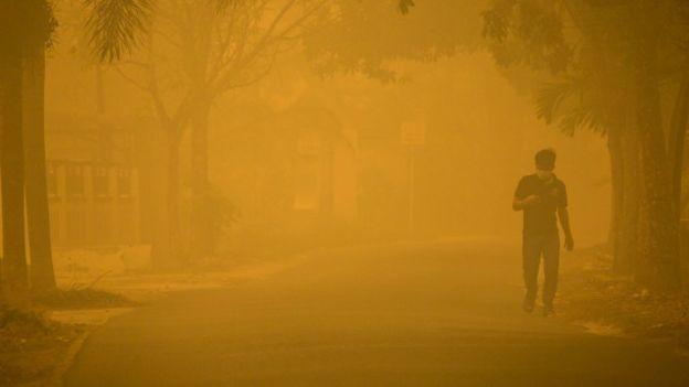 Asap akibat kebakaran hutan