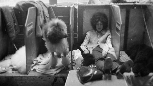 Una persona y su perro en un show canino de 1960