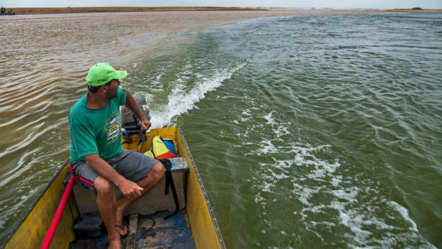 Pescador de Regencia