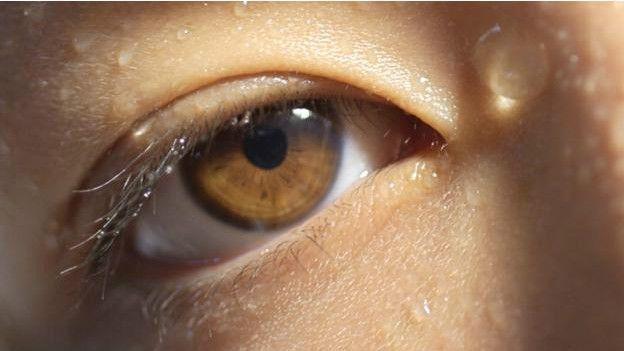 Un ojo