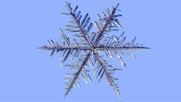 Эти папоротникообразные снежинки близки по своему строению звёздчатым дендритам, но превышают дендритные по размеру