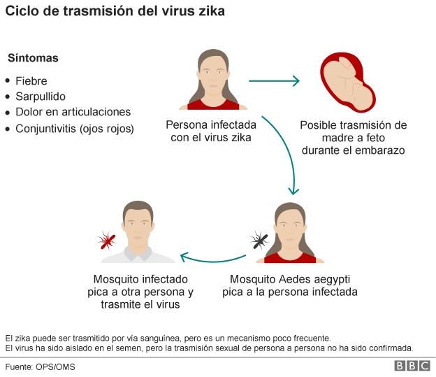 grafico, transmision, zika