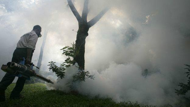 160128143835_mosquito_mata_624x351_getty_nocredit E se eliminássemos todos os mosquitos transmissores de doenças? Notícias