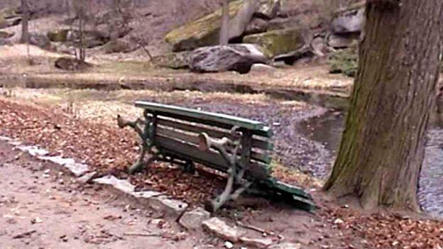 В парке Софиевка вандалы отбили голову бюсту Аристотеля