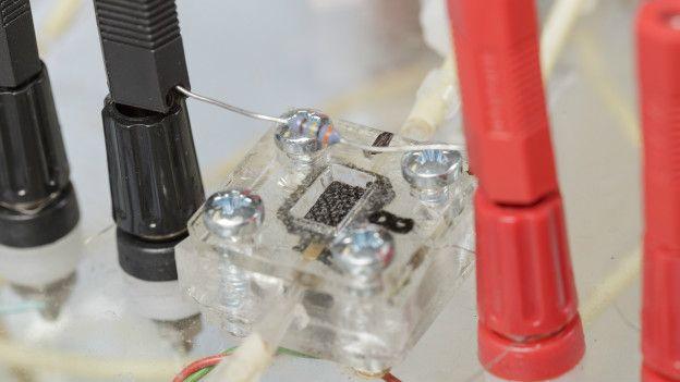 Bateria de energía microbiana