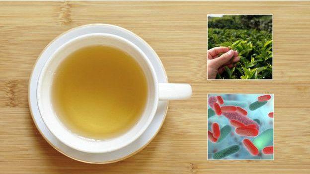 Algunos componentes del té se están utilizando para combatir una bacteria intestinal.