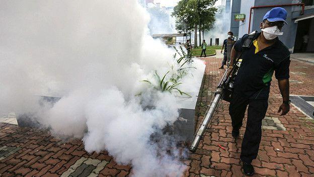 mengurangi populasi nyamuk Aedes Aegyti