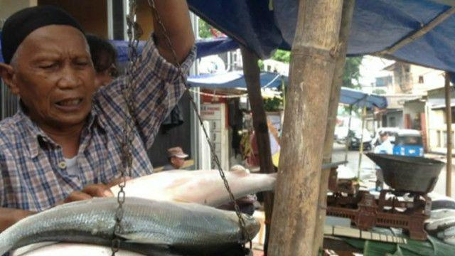 Pasar bandeng di Jakarta Barat