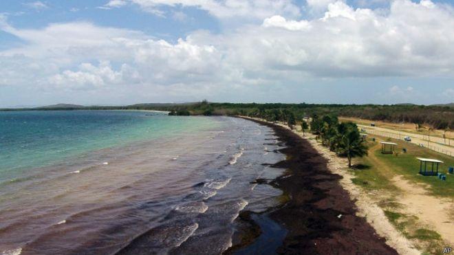 Playa en Puerto Rico