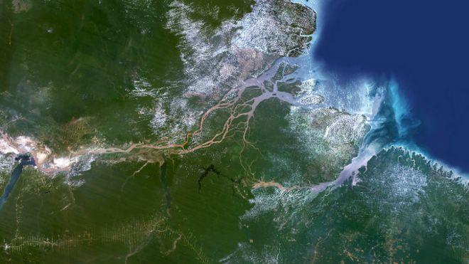 Imagen satelital del delta del río Amazonas