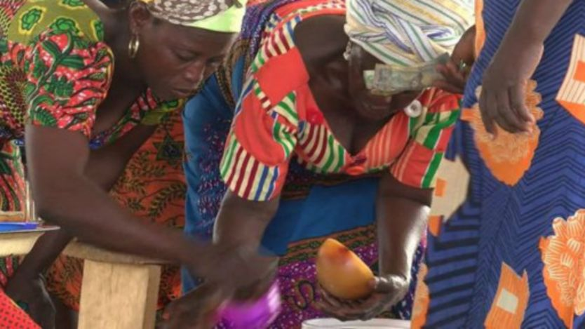 Des femmes choisissant des noix de karité