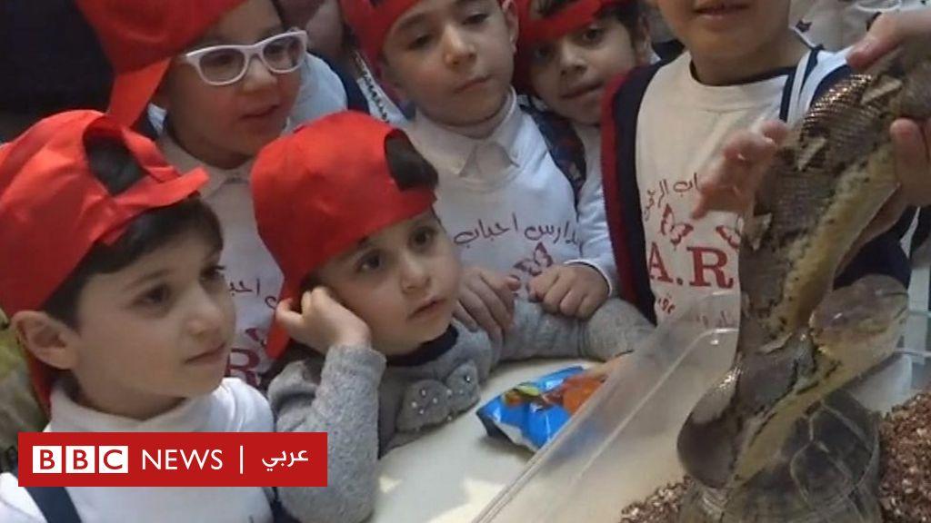 بالفيديو للمرة الاولى.. أطفال في بغداد وتجربة مختلفة مع حيوانات برية