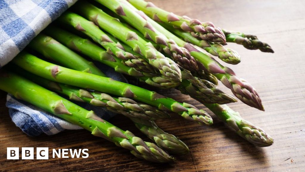 Food may influence cancer spread