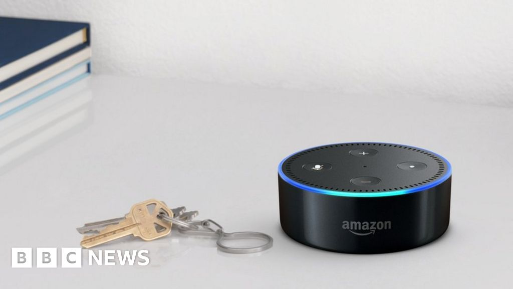 Amazon Echo Dot ad cleared over cat food order