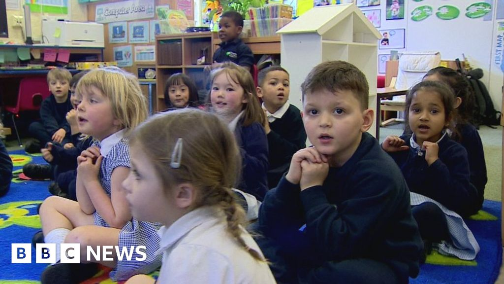 primary school placement Train to become a primary teacher at the university of strathclyde with our ba in primary education year 2: primary 1-3 school-based placement.