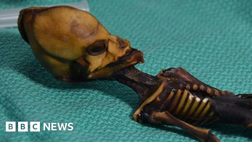 Origin of 'six-inch mummy' confirmed