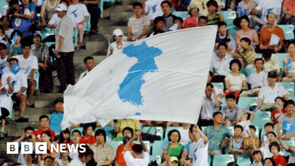 Koreas to march under single 'united' flag in Olympic Games - BBC ...