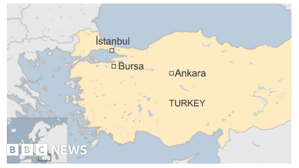 Turkey bus crash: Eleven killed in motorway accident