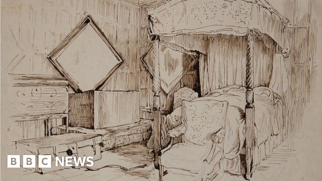 Line Drawing Newspaper : Spine tingling beatrix potter drawings found hidden